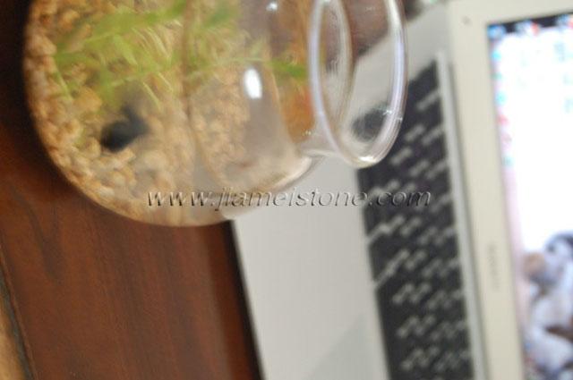 Aquarium Fish Pebbles Gravels Grits